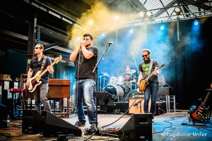 color-Fred-Barreto-Blues-Express-09072016-Luxembourg-by-Lugdivine-Unfer-122