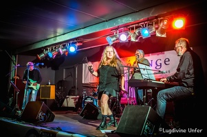 color-TheHeritageBluesCompany-Blues-Express-09072016-Luxembourg-by-Lugdivine-Unfer-94