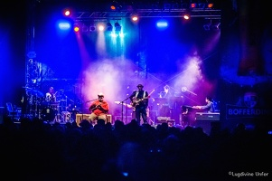 color-Taj-Mo-Blues-Express2017-Lasauvage-Luxembourg-by-Lugdivine-Unfer-43