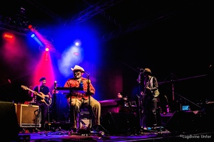 color-Taj-Mo-Blues-Express2017-Lasauvage-Luxembourg-by-Lugdivine-Unfer-59