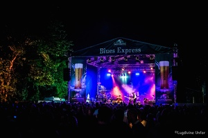 color-Taj-Mo-Blues-Express2017-Lasauvage-Luxembourg-by-Lugdivine-Unfer-74